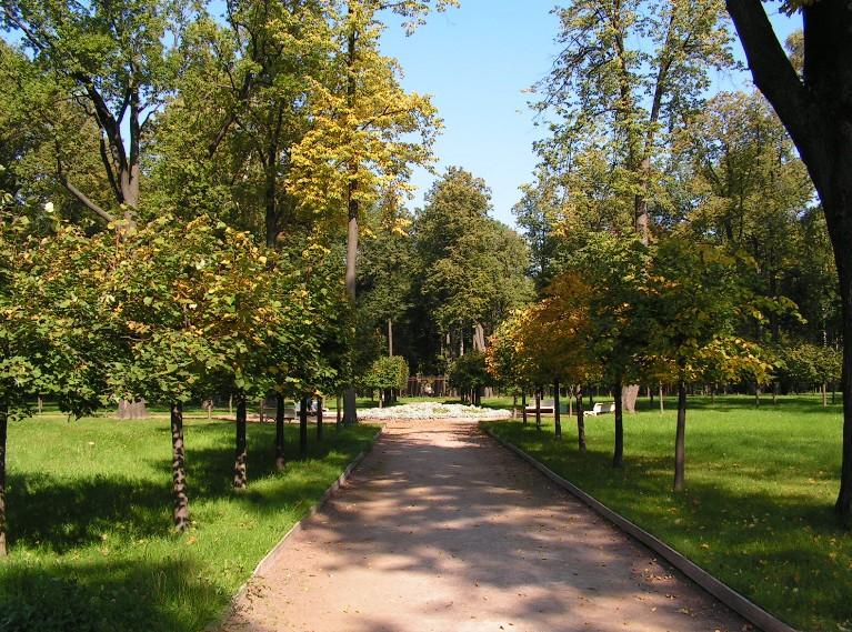 Газон в парковых зонах: особые рекомендации